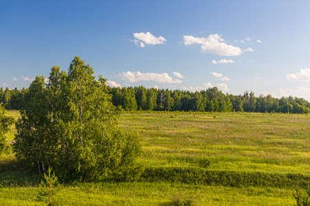 Photo pour Landscape of Russia in Volgograd Oblast region - image libre de droit