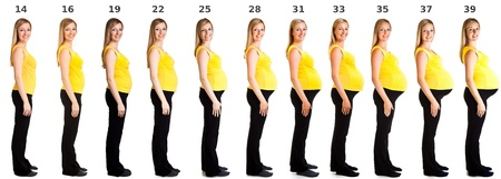 Collage of different weeks of pregnancy