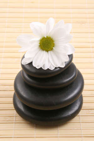 pebbles stack with white daisy - health care