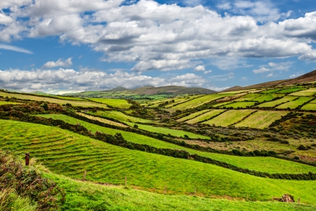 sunny green mountain landscape on Dingle peninsula, Ireland