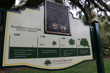 Information sign on the growth of Live Oaks.