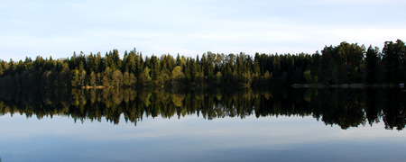 on a sunny day without wind on the lake reflected in the forest.
