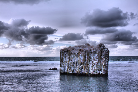 Pole in ocean - uninhabited island. Rock with vertical walls. Basaltic parting, basalt columns. On island sit black seabirds. Toning