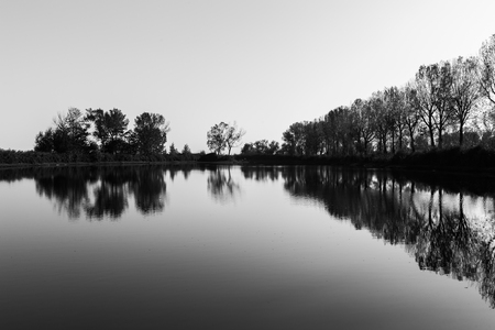 A symmetric photo of Trasimeno lake in Tuoro, with trees and emp