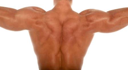 Muscular body builder on white background