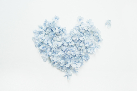 Heart symbol made of hydrangea flower petals. Flat lay, top view Valentines day concept.