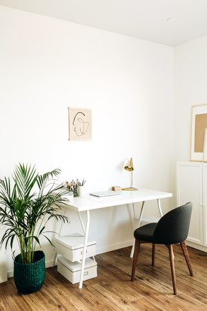Photo pour Modern minimal Scandinavian nordic interior design concept. Home office workspace with table, chair, palm. Freelancer styled working cabinet. - image libre de droit