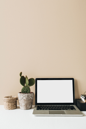 Minimalist home office desk workspace with laptop, cactus on beige background. Front view copy space blank mock up. Freelancer business template.