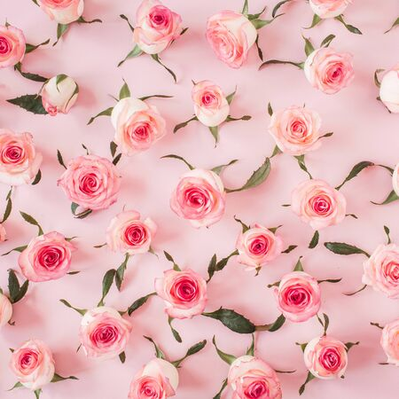 Photo for Flat lay pink rose flower buds and leaves pattern on pink background. Top view floral texture. - Royalty Free Image
