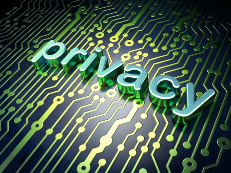 Privacy concept  circuit board with word Privacy, 3d render
