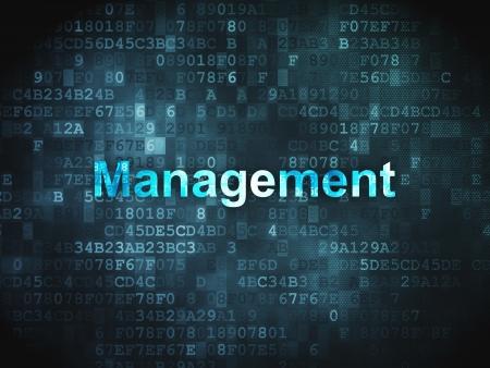 Business concept  pixelated words Management on digital background, 3d render