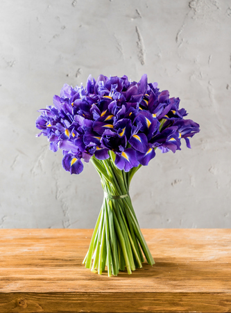Photo for blue  spring flowers - Royalty Free Image