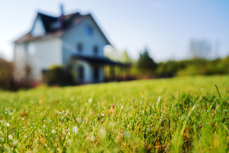 Foto per cottage house and young lawn - Immagine Royalty Free