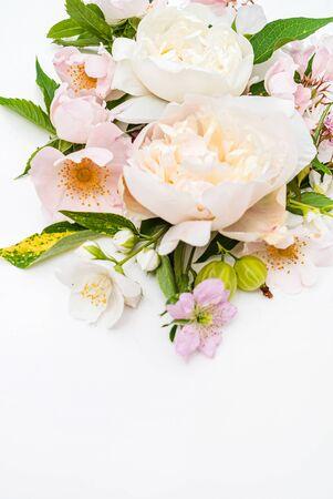 Photo pour Summer flowers on the white - image libre de droit