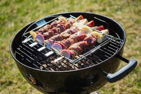 Photo pour grilled kebab with red onion - image libre de droit