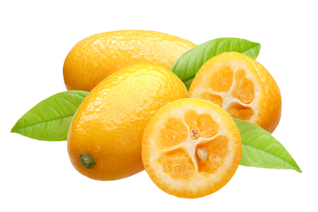 Foto de Kumquats (Citrus japonica fruits) group of four with leaves - Imagen libre de derechos