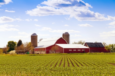 Traditional American Farm With Blue Sky