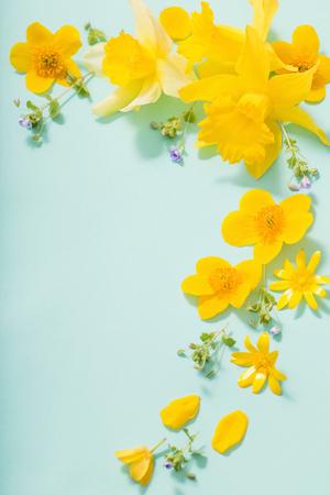 Photo pour spring flowers on green background - image libre de droit