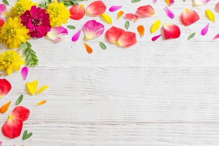 Photo pour red and yellow summer flowers on white wooden background - image libre de droit