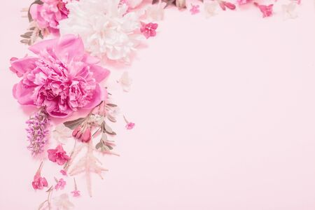 Photo for beautiful flowers on pink paper background - Royalty Free Image