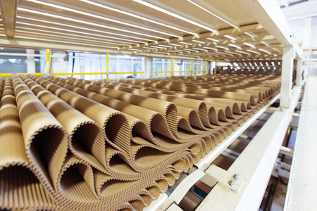 Closeup image of pleat cardboard row at factory background.