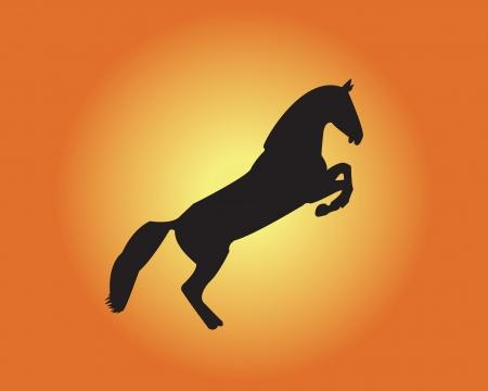 horse on yellow - orange background�µ