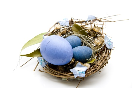 Easter nest with blue eggs