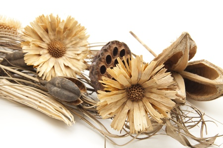 Dry flower arrangement with dry flower