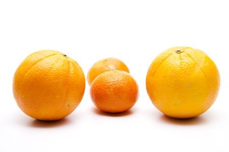 Orange and mandarins