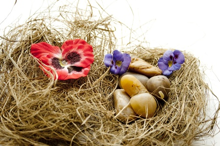 Hay nest with stones and blossoms leaf