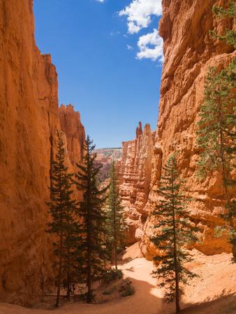 Hiking trail at Bryce Canyon, Utah, United States