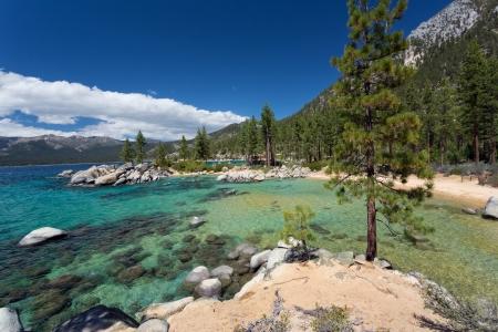 Crystal Clear Waters Of Lake Tahoe Mural Wallpaper