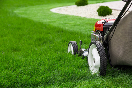 Photo pour Lawn mower - image libre de droit