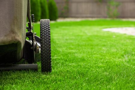Photo pour Lawn mower on green grass - image libre de droit