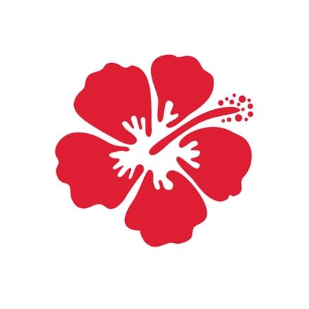 Vector illustration of hibiscus flower