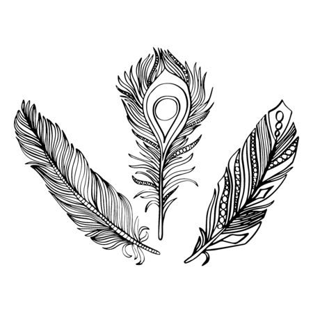 Illustration pour Vector illustration of a set of feathers in black and wight graphic style - image libre de droit