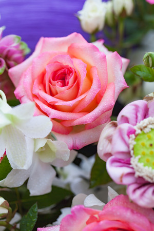Closeup pink and white roses bouquet with rose petals background, shallow depth of field.