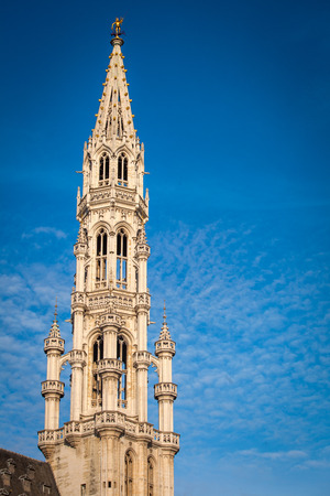 The Tour Inimitable of the Brussels Town Hall, the Grand Place, Brussels