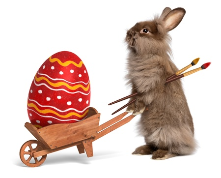 Cute Easter bunny rabbit with a little wheelbarrow and a red painted Easter egg, isolated on white