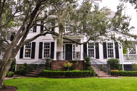 southern mansion with chokeweed tree