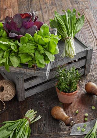 Foto für Herb leafs on wood table - Lizenzfreies Bild