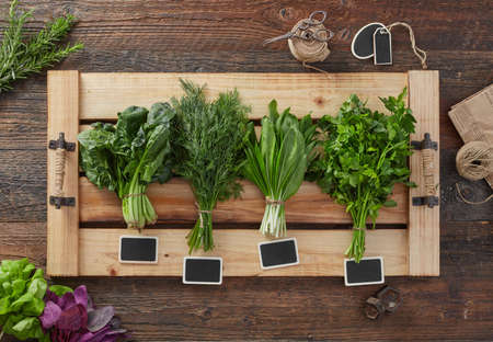 Photo for Various fresh green kitchen herbs - Royalty Free Image