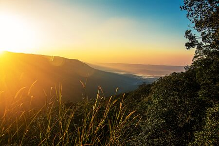 Photo for Pha Deaw Dai Cliffs of The Khao Yai National Park in Thailand . - Royalty Free Image