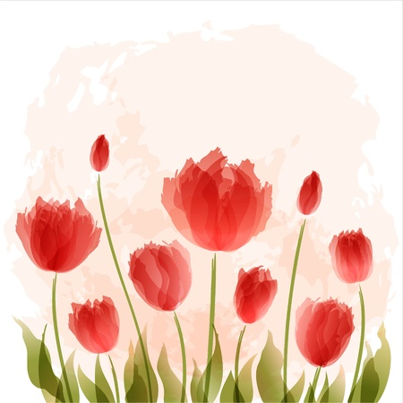 Romantic background with blooming tulips