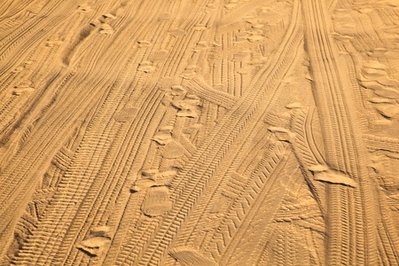 marks of tires in the fine sand