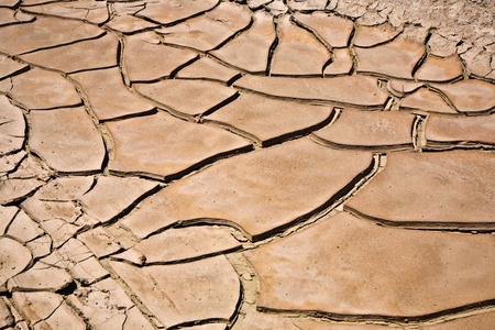 dried and cracked mud in the near of a dried up creek in Desert Valley, Nevada
