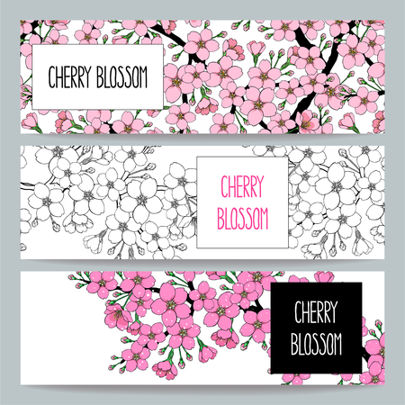 Illustration pour set of three beautiful natural banners of blossoming apple tree branch - image libre de droit