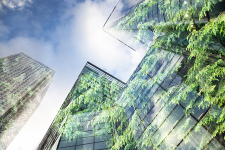 Photo for green city - double exposure of lush green forest and modern skyscrapers windows - Royalty Free Image