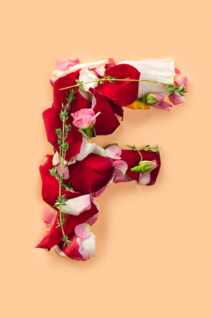 Letter F made from red roses and petals isolated on a white background