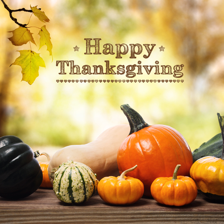 Photo for Happy Thanksgiving message with assorted pumpkins on rustic wooden boards - Royalty Free Image